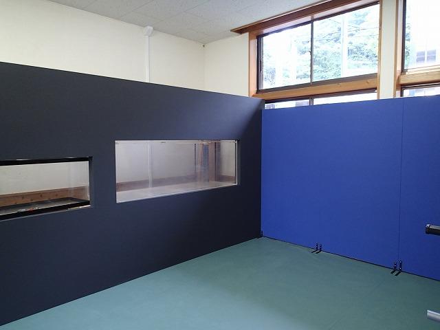 ウミガメの展示室_d0177220_1123853.jpg
