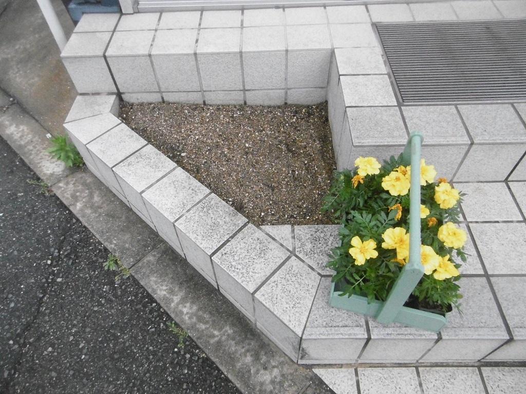 小さな花壇_f0205367_18491396.jpg