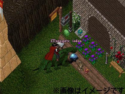 b0022669_1183789.jpg