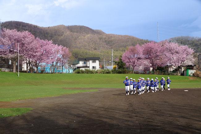 桜・・・3_d0162994_9836100.jpg