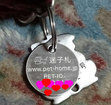 f0033598_2215378.jpg