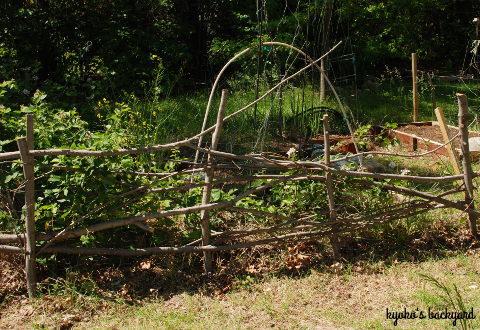 裏庭の花壇の様子(4月下旬~5月上旬)_b0253205_03093960.jpg