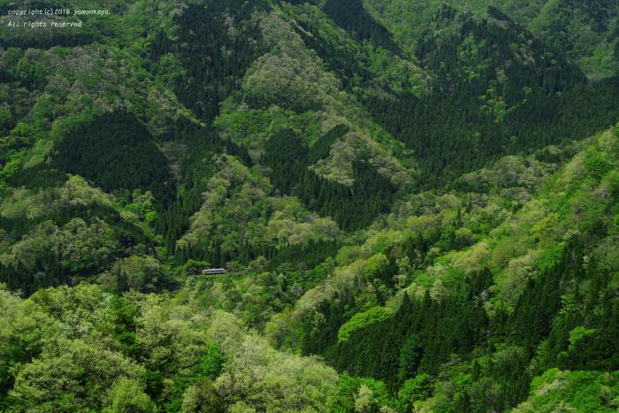 新緑の山々へと_d0309612_22394748.jpg