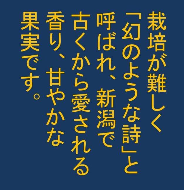 b0081121_81945.jpg
