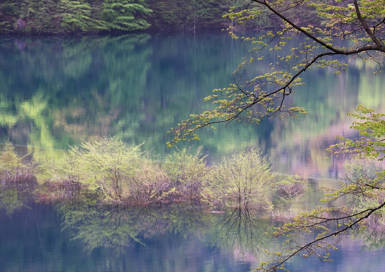 奥四万湖 3_f0018464_18575024.jpg
