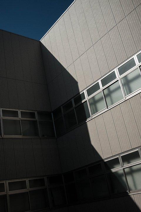 光蜥蜴が斜めに行き交う病院_d0353489_19372224.jpg