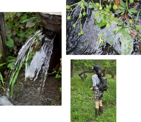 新緑、川釣り散歩。_d0174704_21322193.jpg