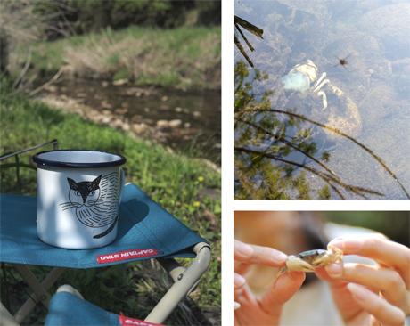 新緑、川釣り散歩。_d0174704_2143983.jpg