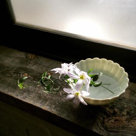 おはなし を 聴き ましょう  そのイチ   平井かずみさん   『花のおはなし』_a0251920_10302867.jpg