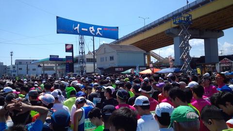 花の渚・種差海岸を駆ける。うみねこマラソン!_e0132433_2035201.jpg