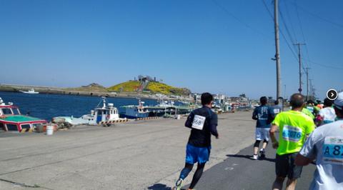 花の渚・種差海岸を駆ける。うみねこマラソン!_e0132433_2091123.png