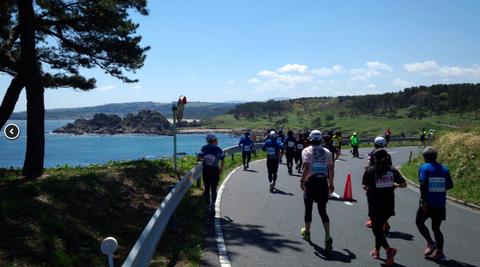 花の渚・種差海岸を駆ける。うみねこマラソン!_e0132433_2092142.png