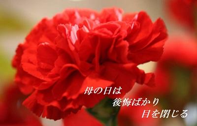 d0164636_85985.jpg