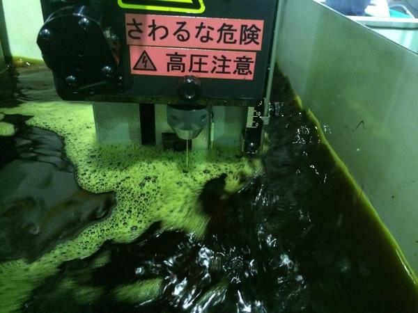 日本人価格_b0100062_19585920.jpg