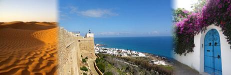 チュニジアとオリーブオイル。_f0174982_11251976.jpg