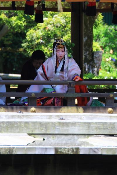 上賀茂神社_e0051888_3501024.jpg