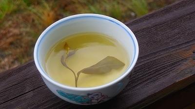 """手作りの""""新茶""""を頂きました!_a0130305_09454459.jpg"""