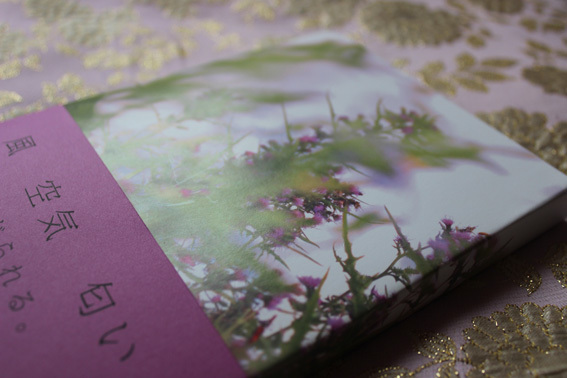フォトブックを作って遊ぶ3☆花園_a0329820_14513061.jpg