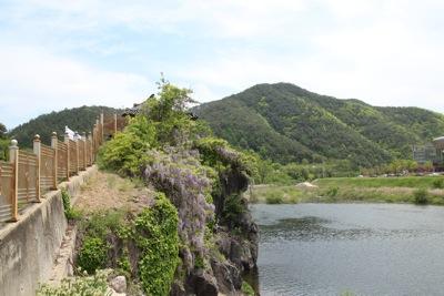 親友盟約五周年記念 江頭龍介 青松白瓷展 於韓国_a0279848_1213814.jpg