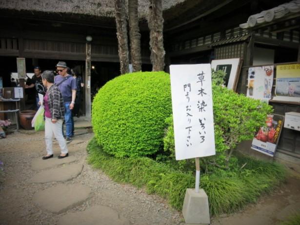 初めての「益子 春の陶器市」②日下田藍染工房~_f0236260_15523827.jpg