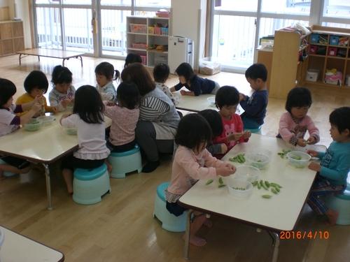 3歳児きりん組 まめむき_c0151262_1433781.jpg