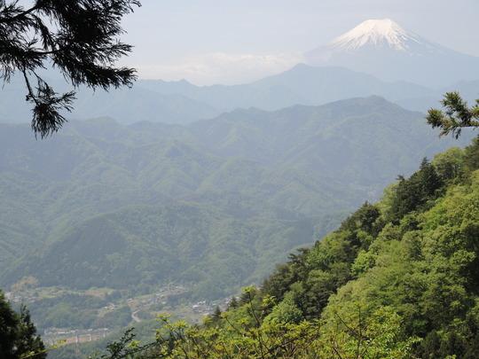 扇山に行きました_e0232277_1350520.jpg