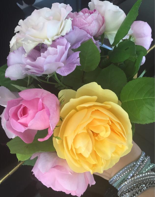 春の贈り物_f0144003_18121326.jpg