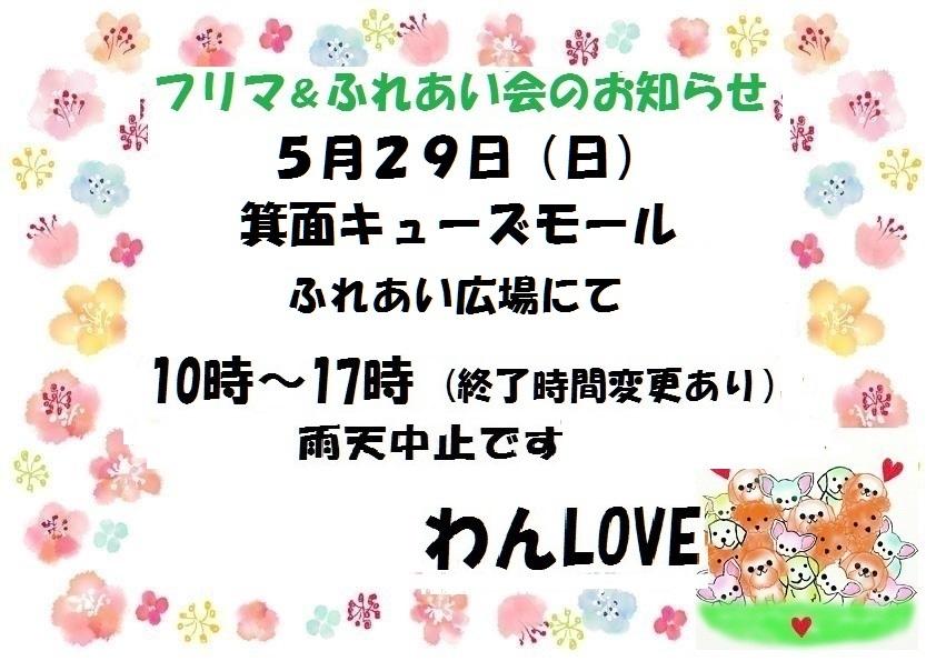 f0343323_00164806.jpg