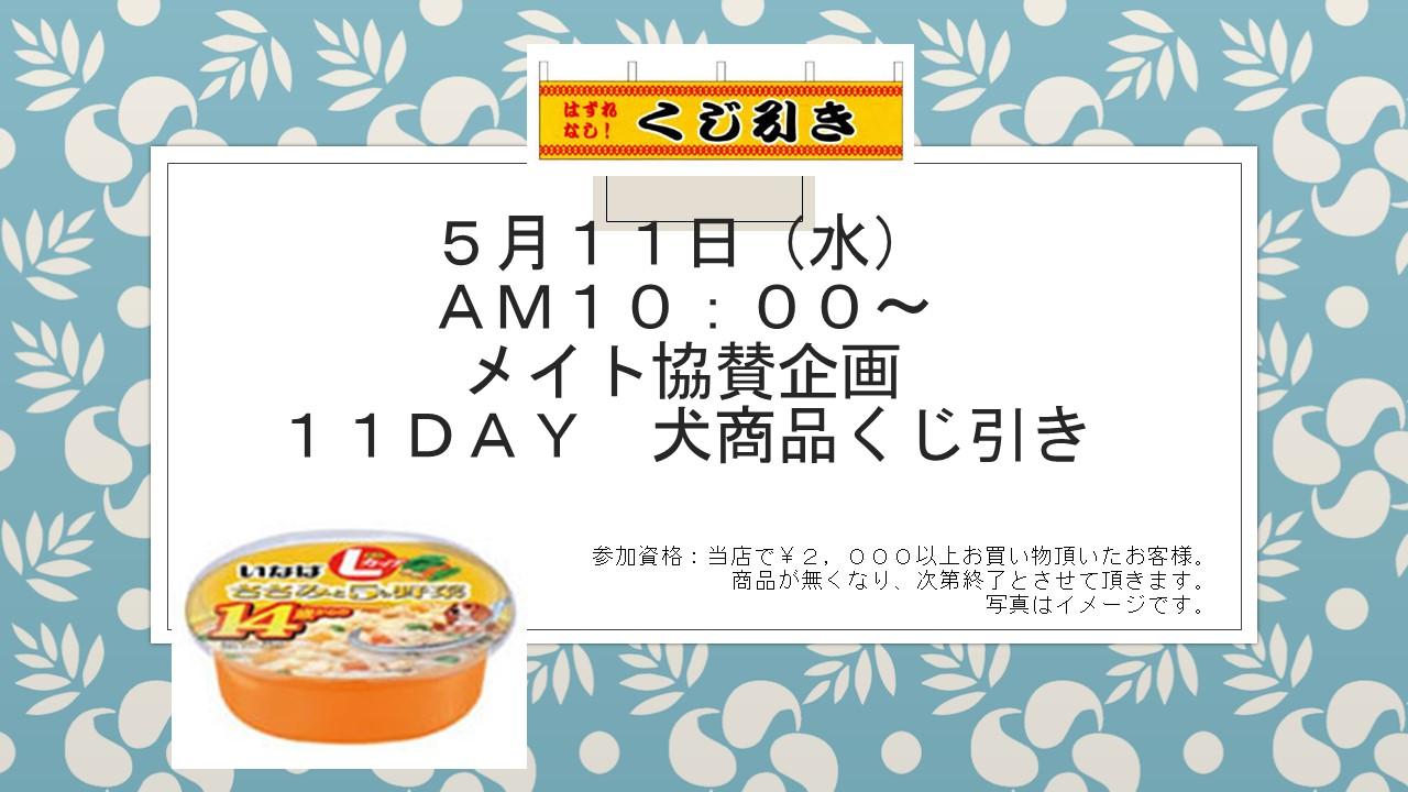 160510 11DAYイベント告知_e0181866_8521413.jpg