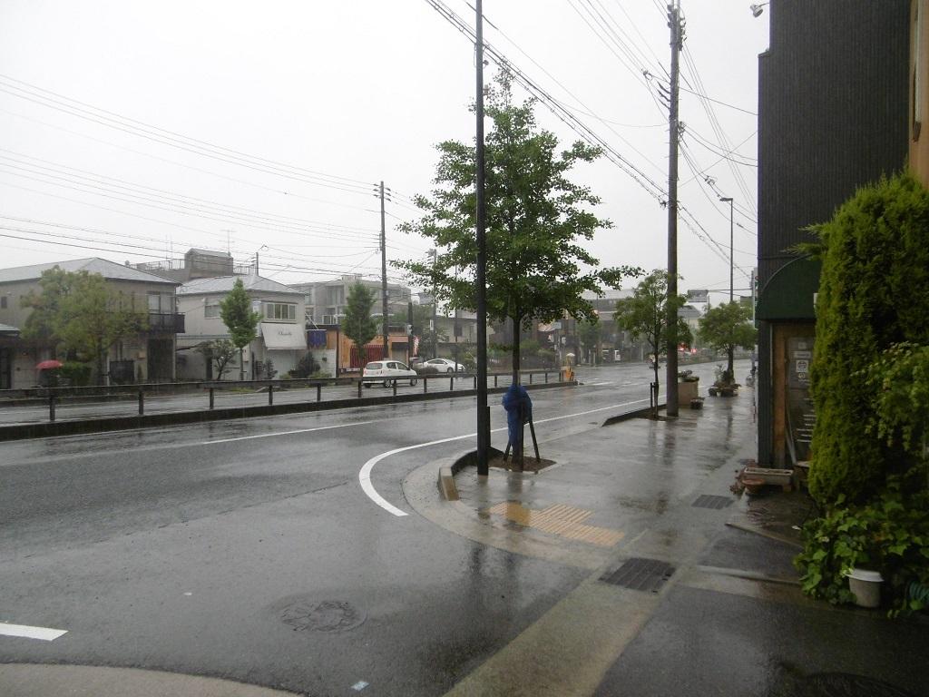 雨の火曜日_f0205367_23134629.jpg