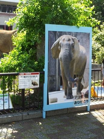命を伝える動物園_e0272869_00332605.jpg