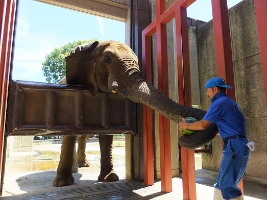 命を伝える動物園_e0272869_00384941.jpg