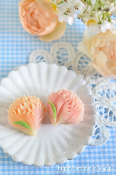 母の日のカーネーション練りきり  Homemade Carnation Nerikiri on Mother\'s Day_d0025294_19361200.jpg