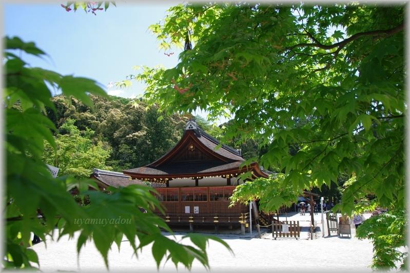 上賀茂神社・お散歩_a0157263_22535717.jpg