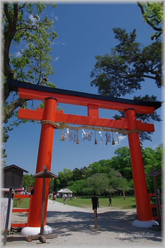 上賀茂神社・お散歩_a0157263_22535759.jpg