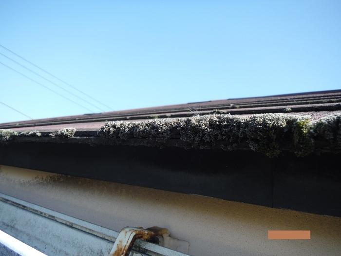 屋根・外壁の塗り替え ~ 水洗い_d0165368_432937.jpg