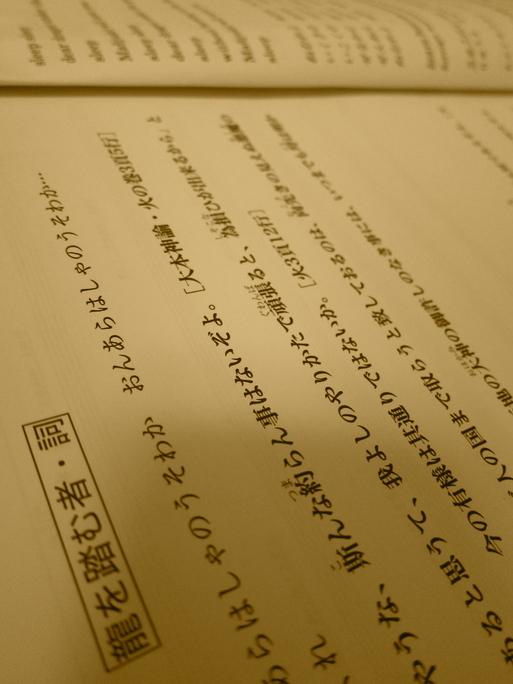 〈龍〉の目覚め。_e0074793_0135848.jpg