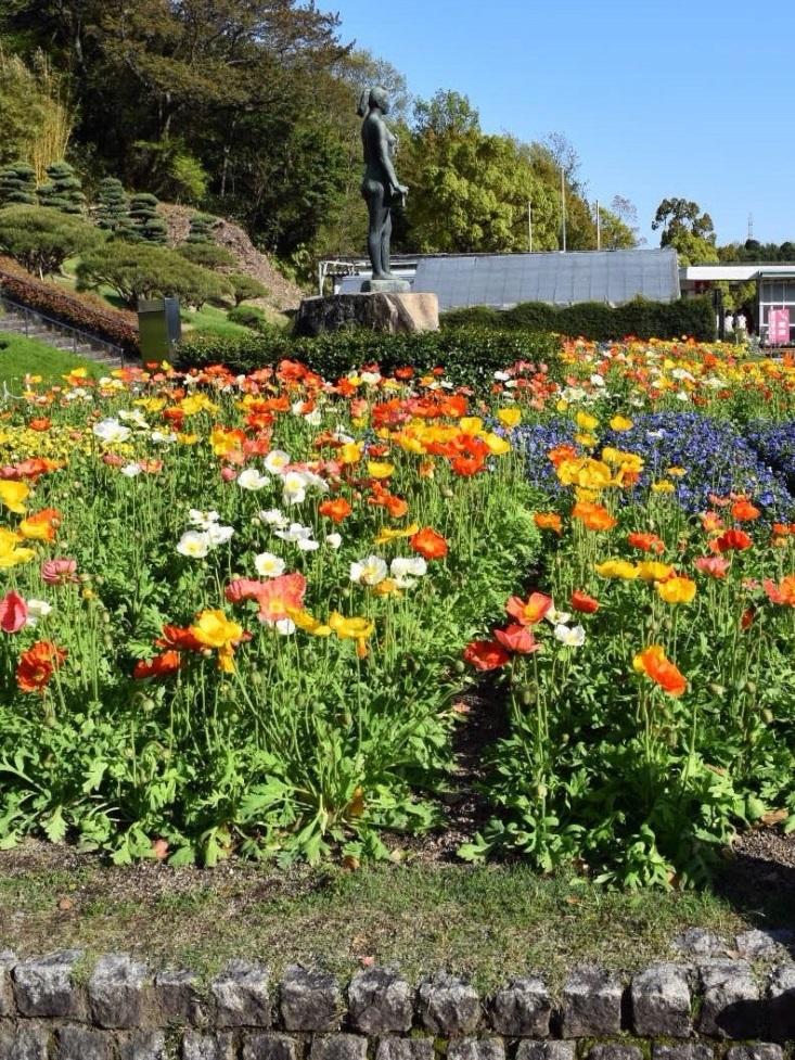 佐伯区の植物公園_b0078597_11262126.jpg