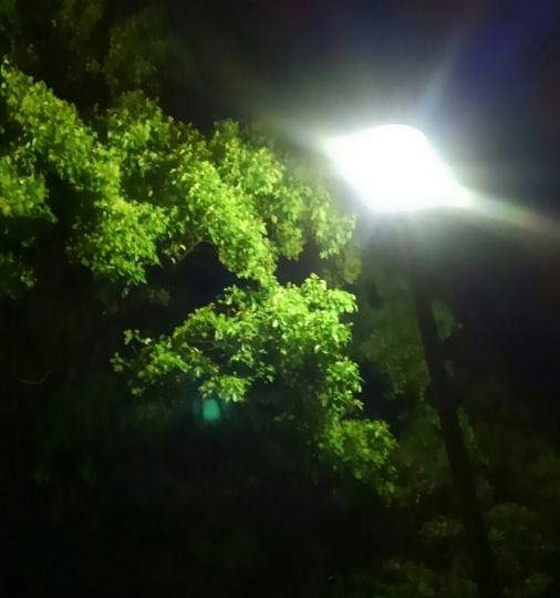 静かな夜に…_e0001906_22030089.jpg