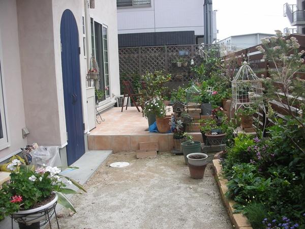 3年間の庭の記録2_f0035506_23425921.jpg