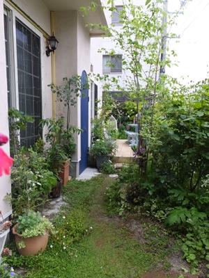 3年間の庭の記録2_f0035506_23515452.jpg