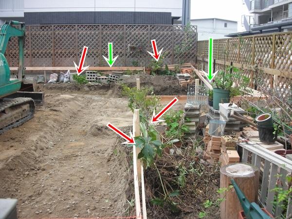 3年間の庭の記録2_f0035506_952753.jpg