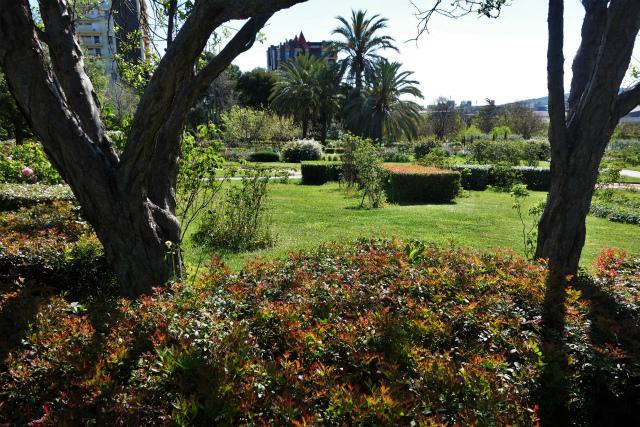 バラ公園で_b0064411_00065751.jpg