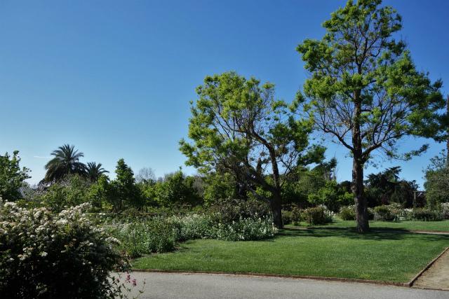 バラ公園で_b0064411_00104132.jpg