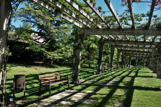 バラ公園で_b0064411_00104142.jpg