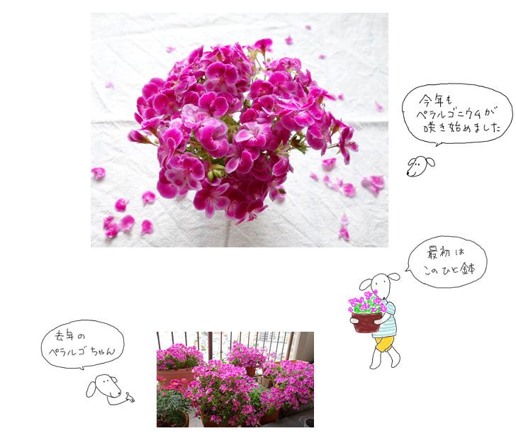 e0065818_20092186.jpg