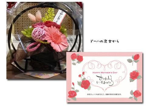 散歩、新選組祭り、薔薇友さん _c0051105_2314657.jpg