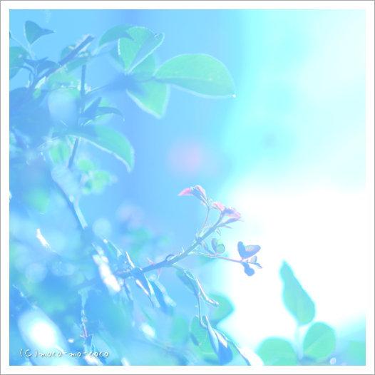 d0274977_10075725.jpg