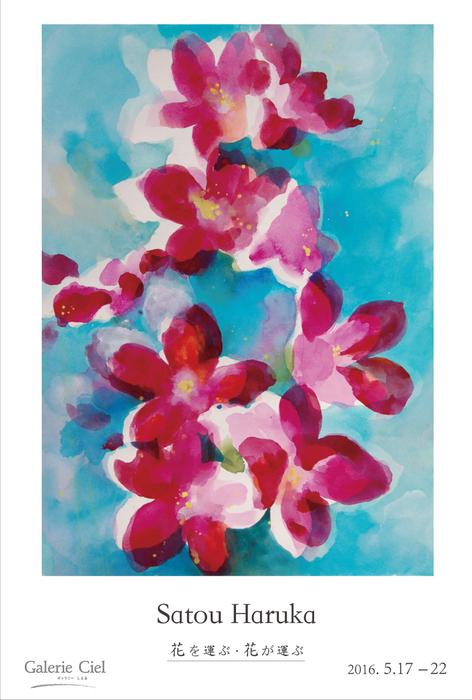 個展「花を運ぶ・花が運ぶ」_f0099979_052783.jpg