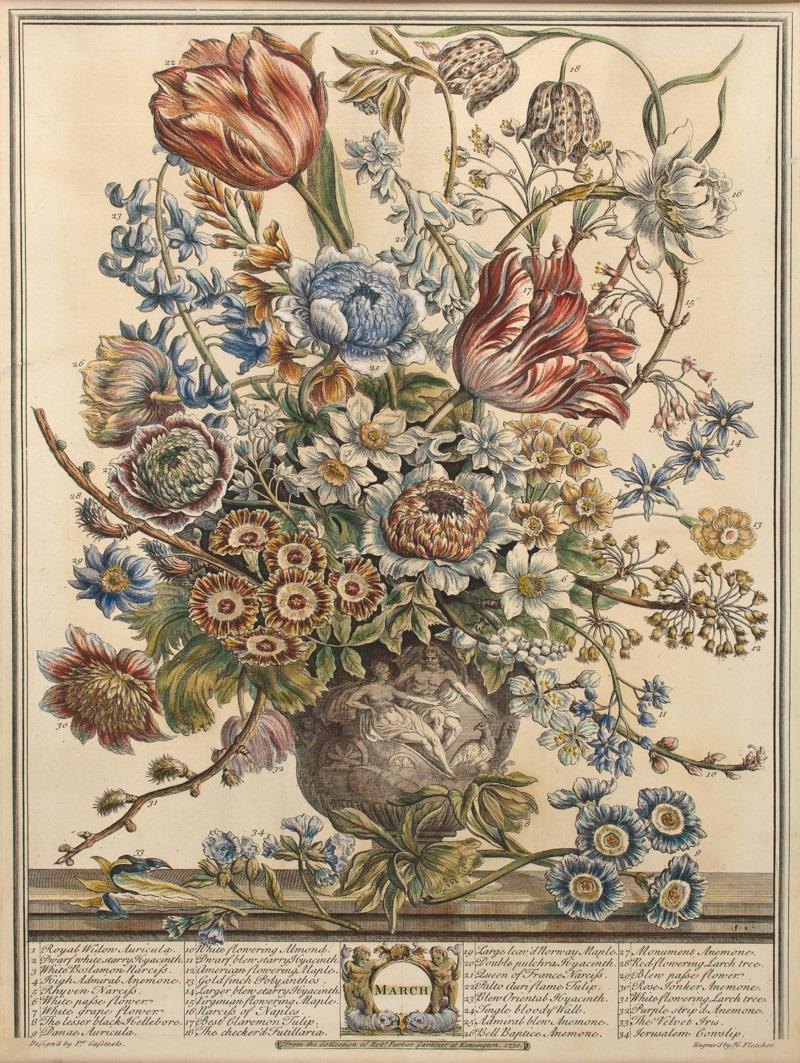 18世紀:花図鑑のような印刷物_c0084183_1772947.jpg